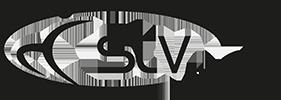 STV Berg Logo